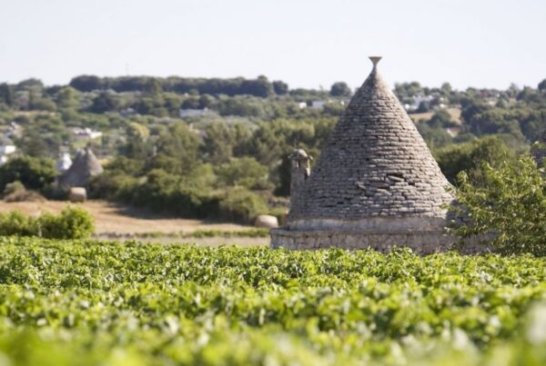 Discovering Valle d'Itria vince il contest BIG You Up